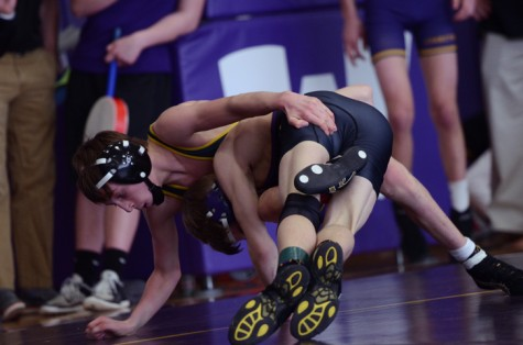 Wrestlers qualify for state dual tournament, send nine to individual state