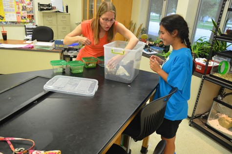 Science Club comes to life