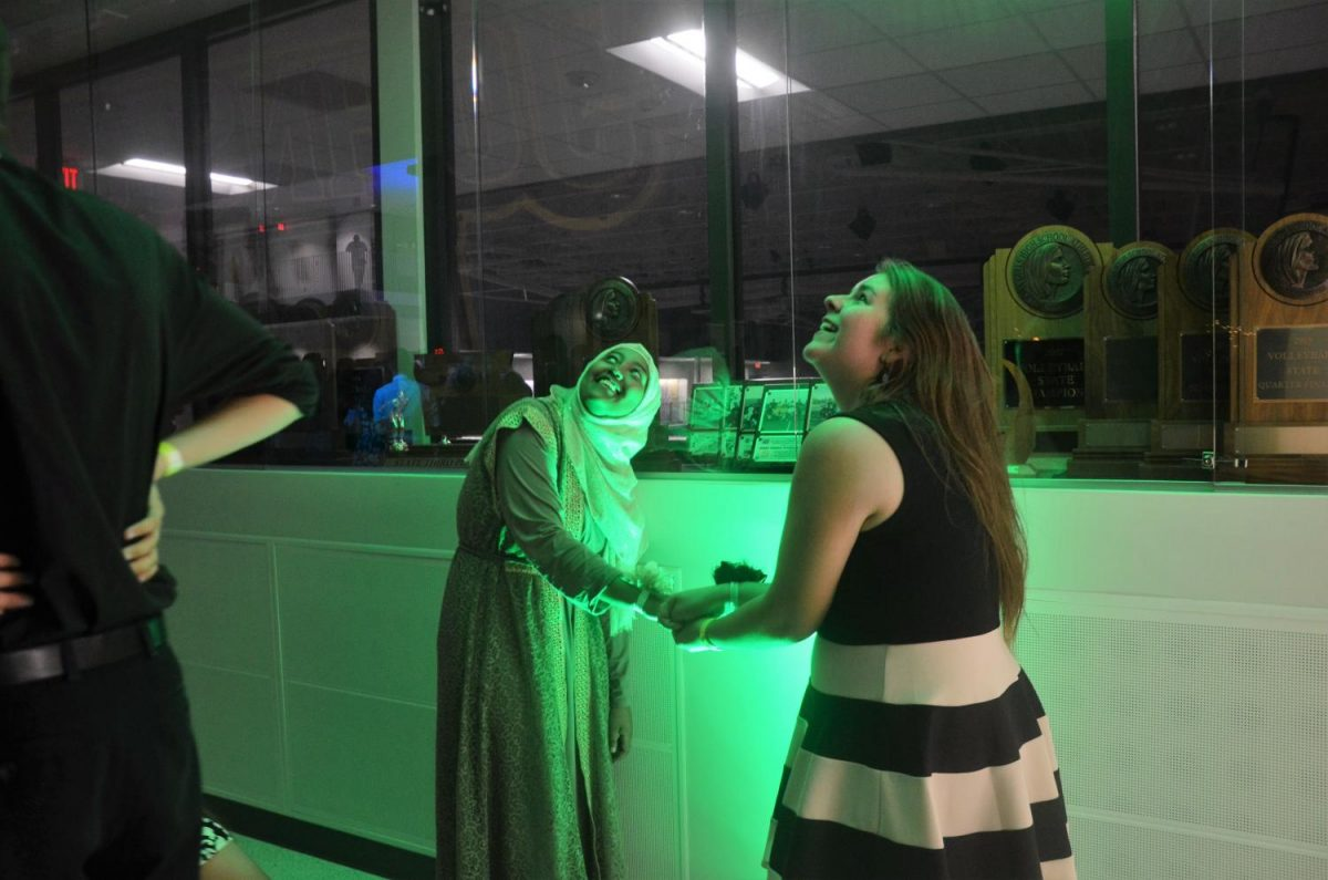 Obsee Abbajabal '19 and Marianne Aldrich '19 make shadow puppets using their hands and a green spotlight.