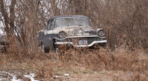 This unloved car was parked in the yard of an abandoned house. I had no idea what it was. Even my mom did not know. I could see the partial logo on the car – Stude-aker. When I looked it up on my phone, I realized it was a Studebaker, a brand that has not been around since the early 60s. No one answered the door, so how it got there is a mystery. It seems to be either a 1956 Commander or President Classic.