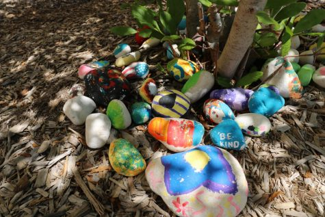 Students painted rocks to help with the school